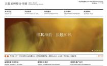iBrand设计策划公司案例展示网站