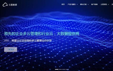 云星数据自适应企业官方网站定制