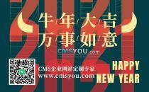 2021新年快乐,精彩继续!