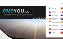 CMSYOU团队开启多语言高端企业网站定制专项服务